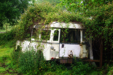 abandoned car in nature