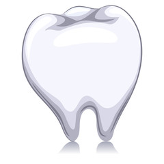 Vector Illustration of a White Tooth