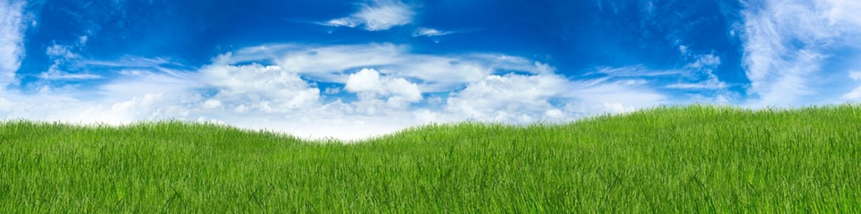 green hilly grass landscape panorama in front of blue sky / Grün hügelige Wiese Gras landschaft vor blauem Hiummel