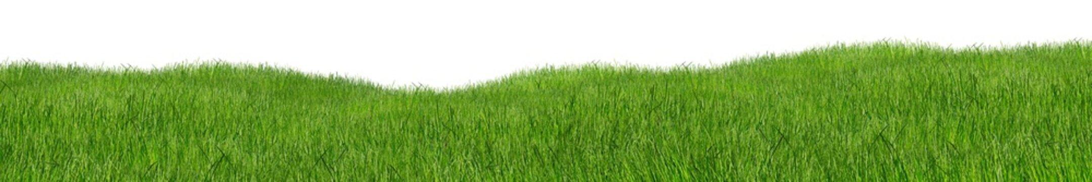 green hilly grass landscape panorama isolated on white background / Grün hügelige Wiese Gras landschaft isoliert vor weißem Hintergrund