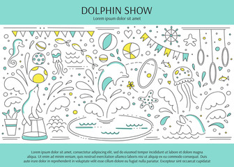 Dolphin show banner