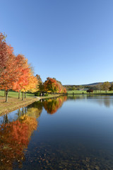 Wall Mural - Lake in Autumn Surrounded by Trees in Fall Colors