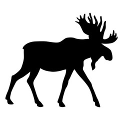 adult moose go black silhouette