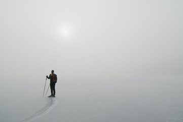 Rear view of a person standing with hiking pole on ice rink