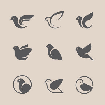 Black bird icons set