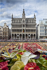 Flower Carpet in Front of King House or Het Broodhuis in Grand Place of Brussels