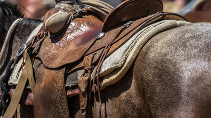 Detail of horse's leather saddle, blanket and other tack