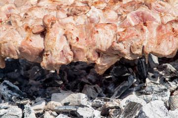 roast meat skewer