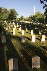 Oakland Cemetery Gravestones Landscape Atlanta Georgia Headstone