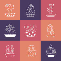 Hand drawn Set of Cactus in the pots.
