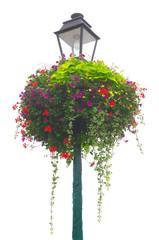 Freigestellte Blumenampel in leuchtenden Farben auf Pfosten mit Straßenlaterne  Cropped Hanging Basket in bright colors on pole with street lamp