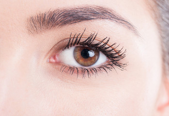 Beauty close-up eye with mascara and natural skin look