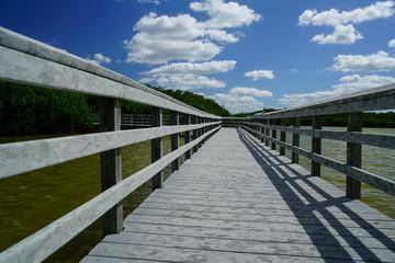 Water Boardwalk into the Sky