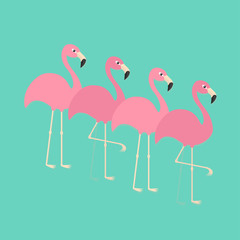 Pink flamingo set. Exotic tropical bird. Zoo animal collection. Cute cartoon character. Decoration element. Flat design. Blue background. Isolated.