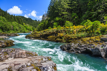 Mountain river and forest in North Cascades National Park, Washington, USA