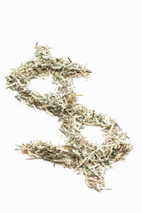 Shredded US currency