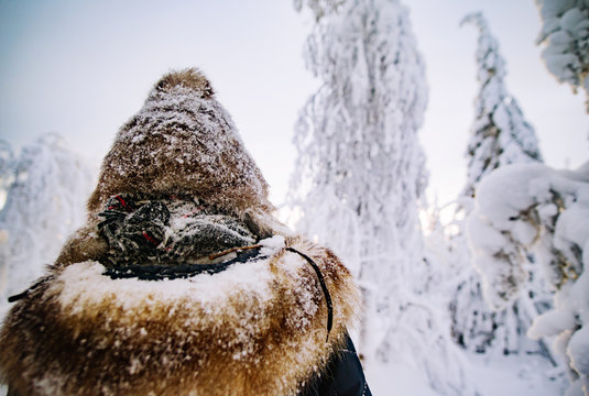 Close-up of man wearing warm clothing during winter