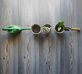 Overhead view of gardening equipment and potted plants on wooden table