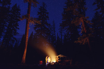 People standing by bonfire at campsite in forest during night