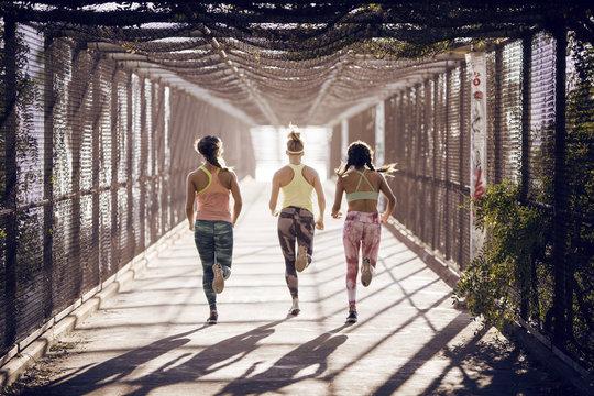 Rear view of women running on bridge