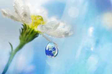Save Earth Save Us, Earth in water drop reflection under white flower, Elements of this image furnished by NASA