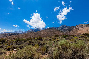 Gray Mountain area-Inyo National Forest-California. This area provides another route to Mount Whitney