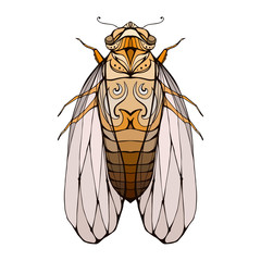 Illustration of colorful cicada  with boho pattern. Vector element for coloring prints, for T-shirts, tattoos and a sketch for your creativity