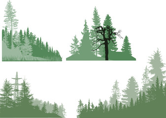 four green forest compositions isolated on white