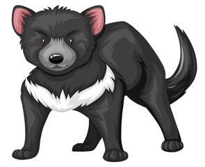 Tasmanian devil with black fur