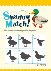 Game template for shadow matching duck