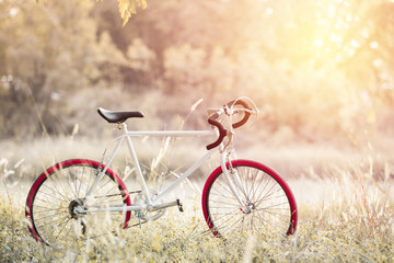 Sport Vintage Bicycle with Summer grass field ; vintage filter s