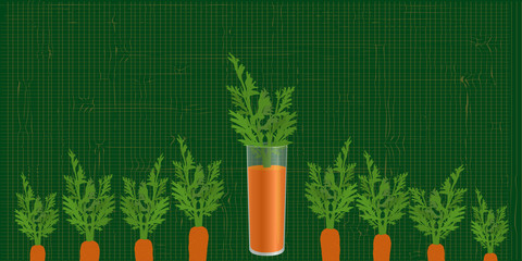 carrot in a glass in the bed garden
