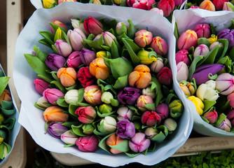 Frisches Tulpen-Bouquet
