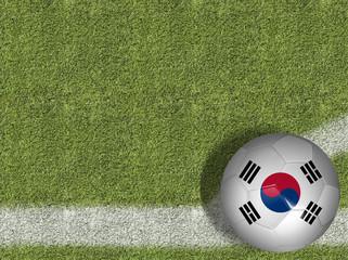South Korean Ball in a Soccer Field