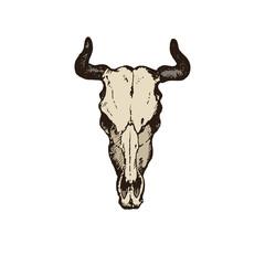 Hand Drawn goat skull vector illustration on white background.