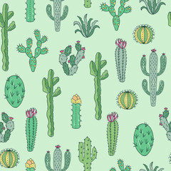 Cactus seamless pattern. Background with succulents. Botanical cactus pattern