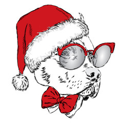 Bulldog in a Christmas hat and sunglasses. Print on a postcard or poster. Vector illustration. Holiday card. New Year's and Christmas. Santa Claus. Dog.