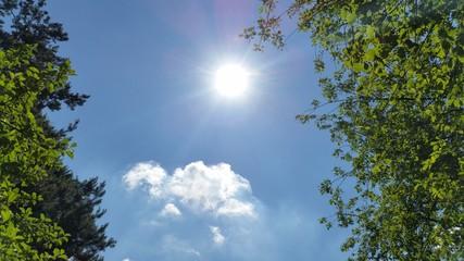 Fototapeta Słońce i niebo obraz