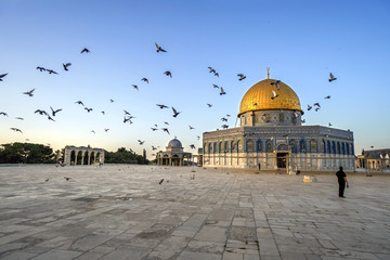 flying pigeons and Dome of the Rock image
