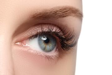 Macro shot of woman's beautiful eye with extremely long eyelashe
