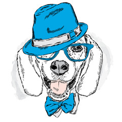 Funny dog with hat and glasses. Vector illustration for greeting cards , posters or prints on clothes . Funny dog.