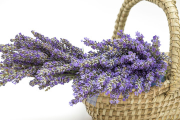 lavender close up (isolated lavender) lavender in a basket