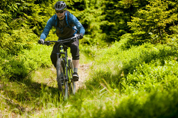 Man on mountain bike rides on trail in the forest.