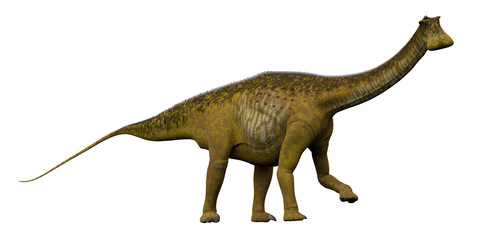 Nigersaurus Side Profile - Nigersaurus was a sauropod herbivorous dinosaur that lived in the Republic of Niger, Africa during the Cretaceous Period.