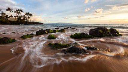 Moss on Rocks at Hawaii Beach