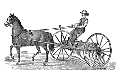 19th century illustration:cart horse and rake carriage