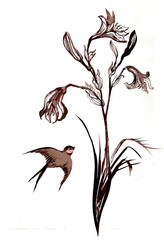 Hand painted illustration of martlet and lily flower in the eastern  style.