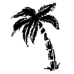 Coconut palm tree black sketch drawing