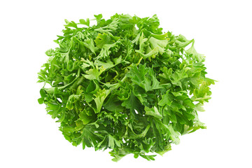 Parsley herb on white
