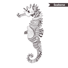 Seahorse. Hand drawn